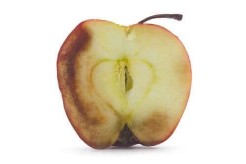 산화된 과일을 먹으면 나타나는 결과