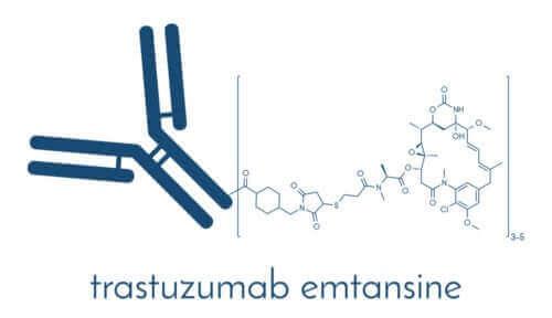 유방암 치료를 위한 T-DM1의 효능