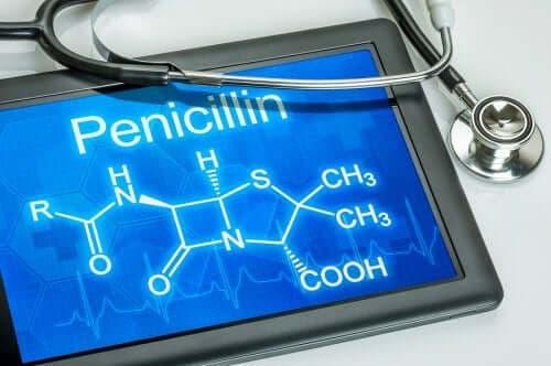 페니실린의 용도