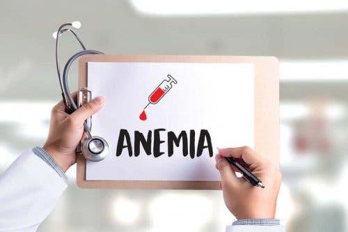 빈혈과 철 결핍증