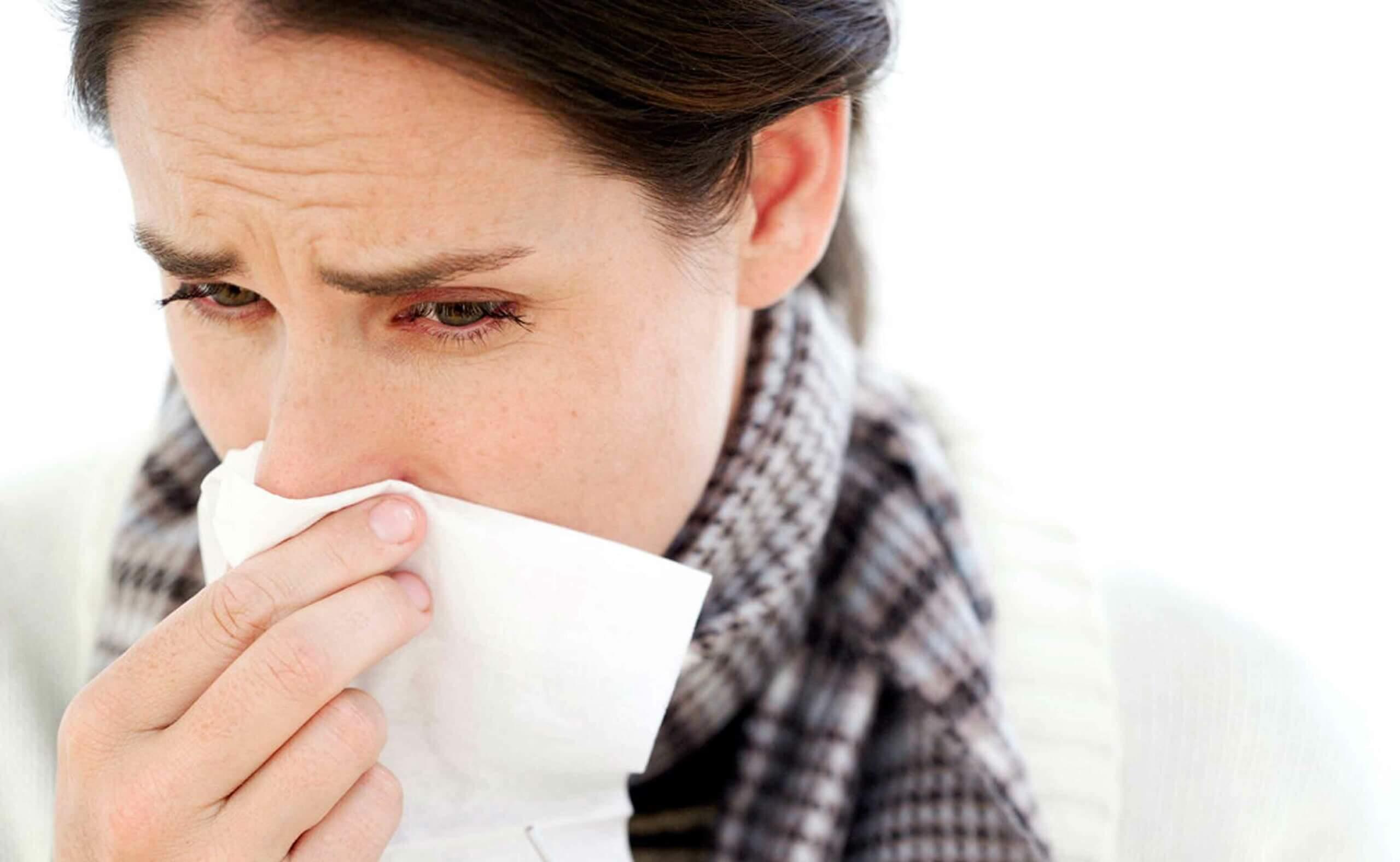 감기 및 기타 호흡기 질환과 싸우는 약용 식물