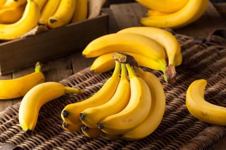 열대 과일 바나나