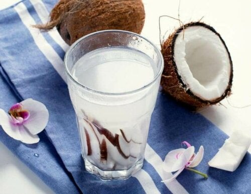 열대 과일 코코넛