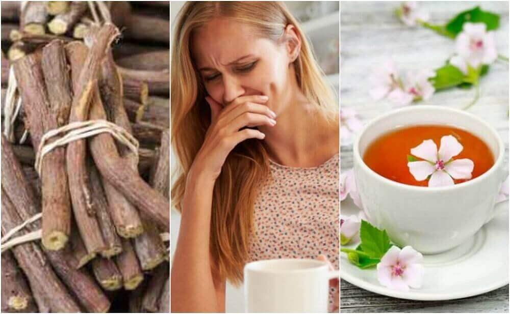 식도염을 치료하는 5가지 자연 요법