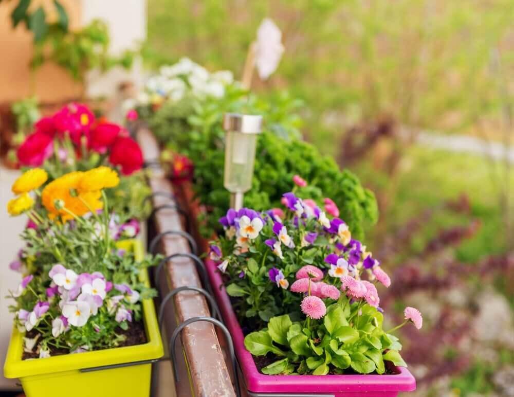 자신만의 작은 정원을 만들기 위한 재료와 지침