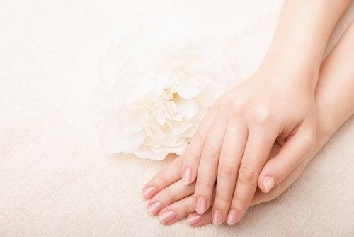 손을 보호하는 홈메이드 핸드크림