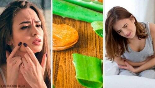 건강 증진을 위해 알로에 베라를 사용하는 방법