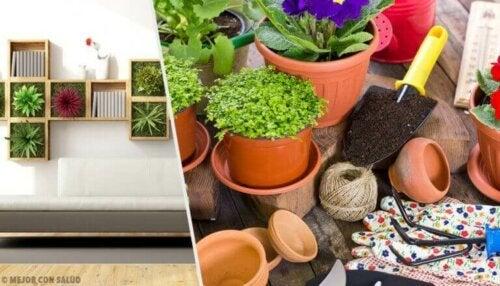 식물 인테리어 아이디어 10가지