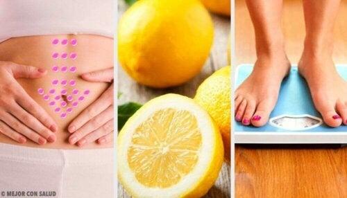 레몬이 선사하는 놀라운 이점 5가지