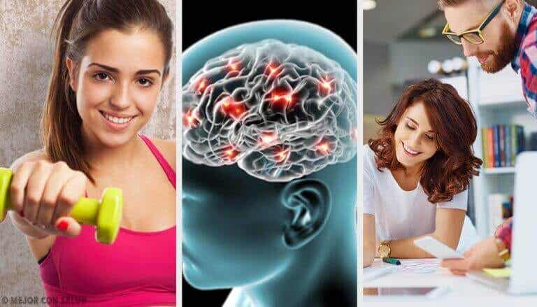 신경생물학이 알려 주는 8가지 행복의 비법