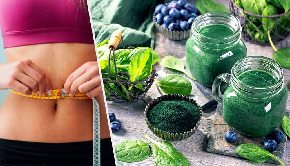 스피루리나로 몸무게를 줄이는 비법