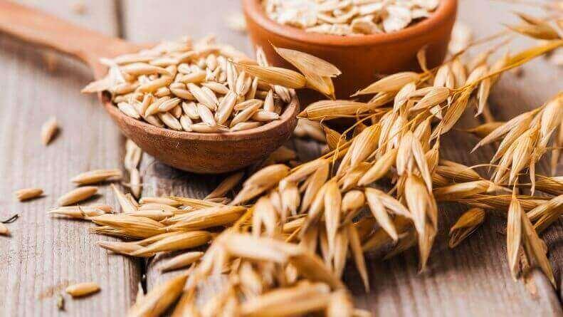 5. 통곡물