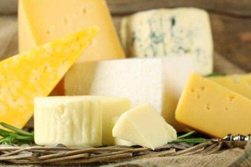 치즈의 종류 및 영양
