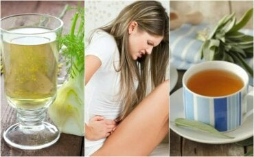 설사 증상 완화에 효과가 좋은 허브차 6가지