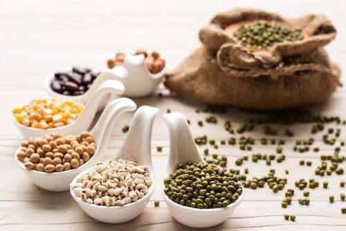 지방을 줄이는 데 도움이 되는 콩류 5가지