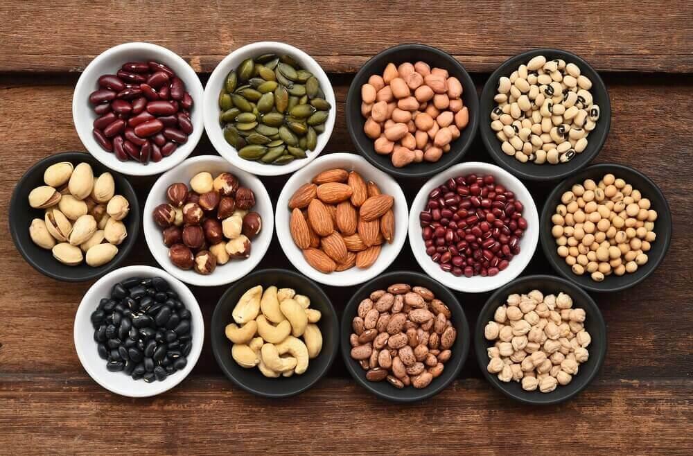 5. 더 많은 단백질을 섭취하자