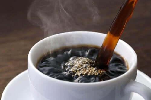 카페인에 대한 과학적 의견