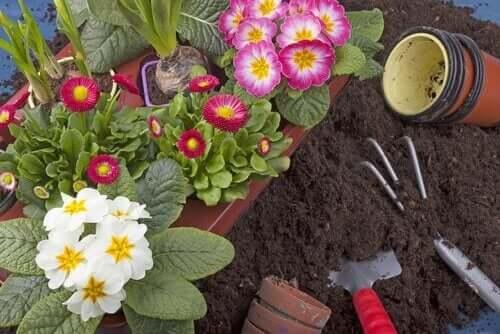 더 작은 정원을 위한 정원 부대용품