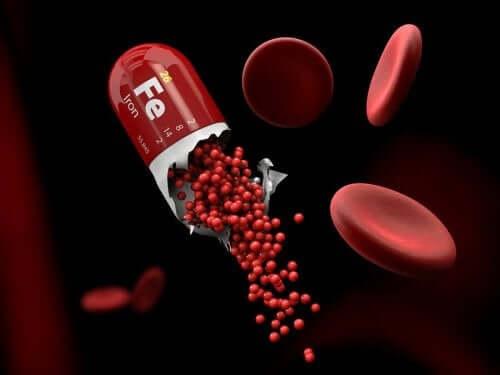고페리틴 혈증을 완화하는 방법