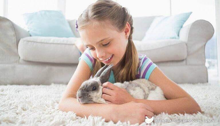 3. 반려동물은 우리가 한 사람으로서 성장하도록 도와준다