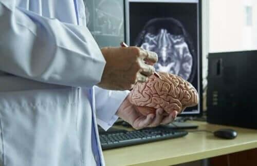 뇌척수막에 대한 모든 것을 알아보자