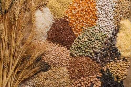식단에 씨앗류를 추가하는 3가지 팁