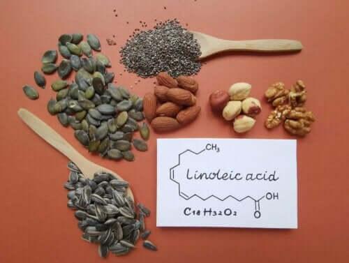 리놀레산을 포함한 식품 유형