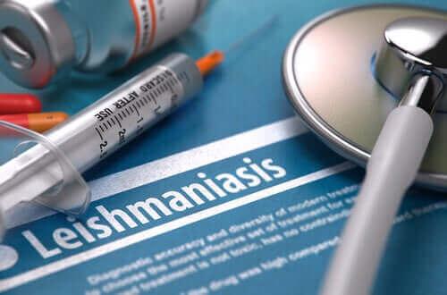 리슈마니아증은 전염병인가