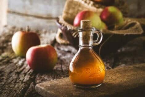 과학적으로 뒷받침되는 사과 식초의 특성