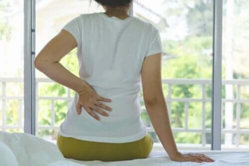 만성 신부전의 증상 및 진단