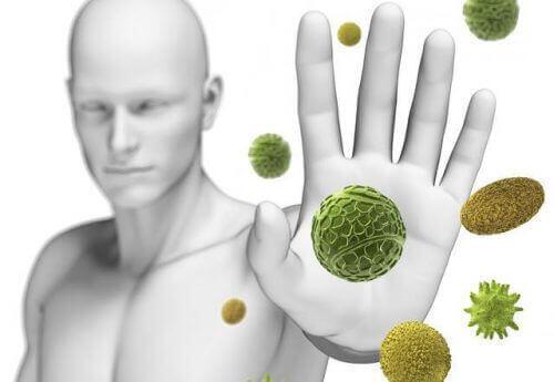 우리 건강에 좋은 백리향의 이점 및 특성 5가지