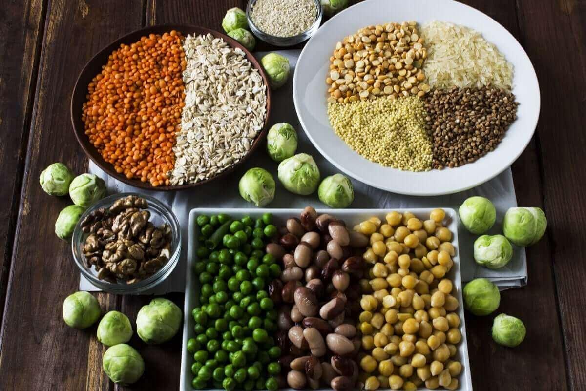왜 단백질 섭취가 그렇게 중요할까?