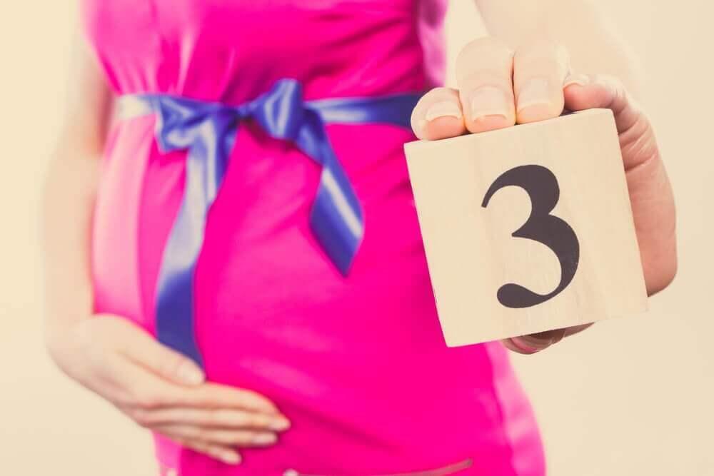 임신 개월별 구토