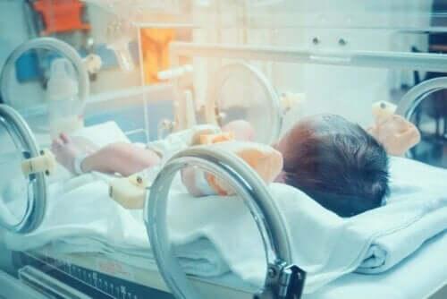 유아 및 소아 패혈증: 징후 및 증상