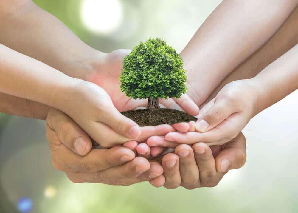 가정에서 환경을 보호하는 10가지 팁
