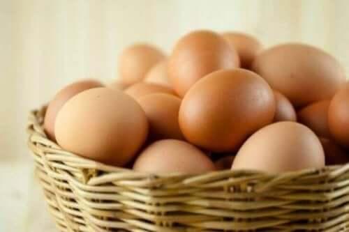 비타민 B군 달걀
