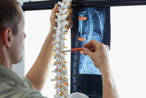 척추측만증에 적합한 운동