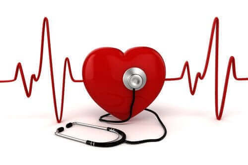 심장 잡음의 특성