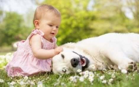 자녀가 동물을 무서워하면 어떻게 해야 할까