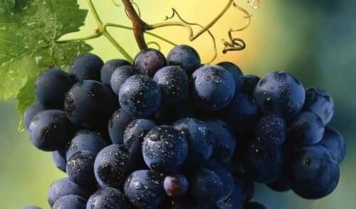 과일은 체중 감량을 방해할까?
