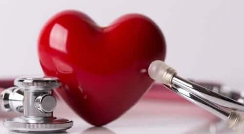 심장 잡음의 다른 분류