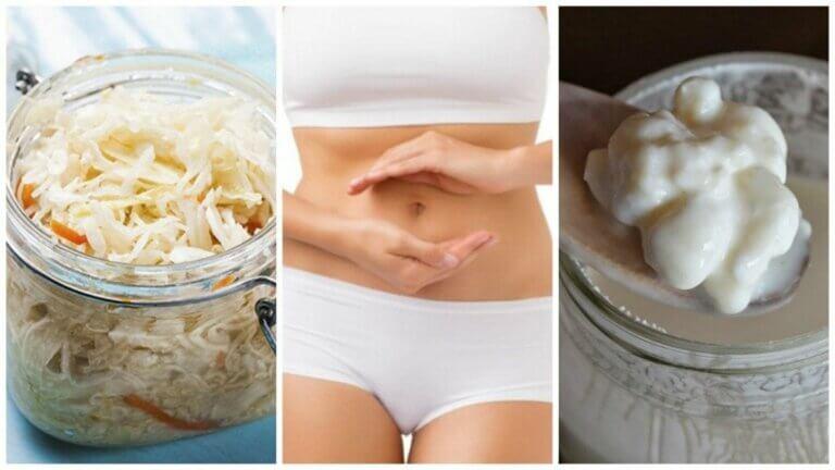 발효 식품 섭취의 이점