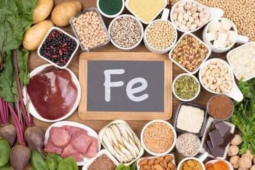 철결핍성 빈혈 식단에 포함해야 할 음식