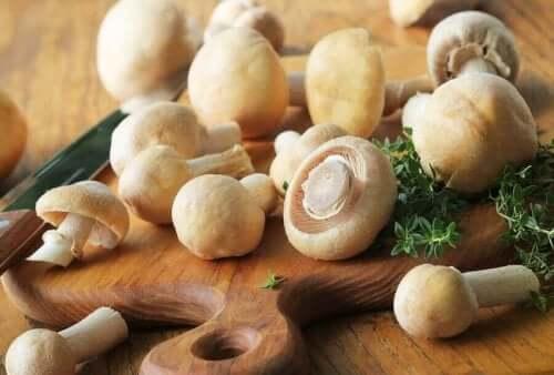 3가지 저칼로리 버섯 레시피