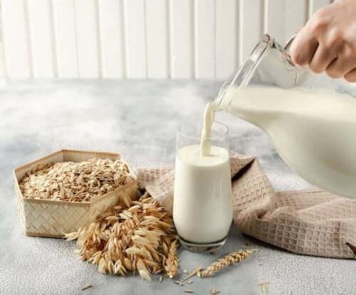 귀리 우유의 특성 및 이점