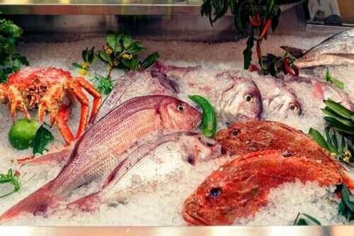 생선에 축적된 수은의 영향