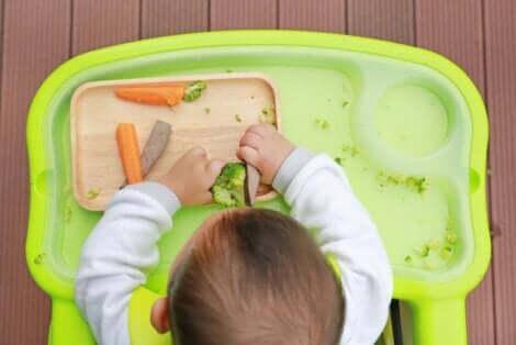아기에게 고형식을 먹이는 것에 관한 모든 점