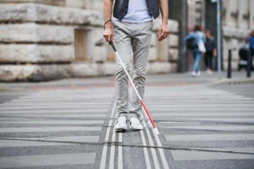 시각 장애에 대해 알아야 할 모든 점