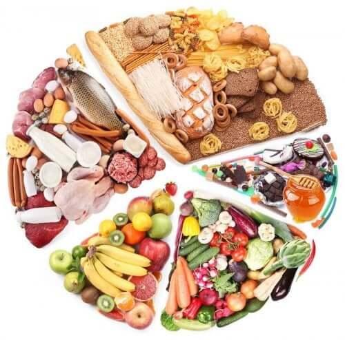 건강한 식단을 위한 5가지 필수 영양분
