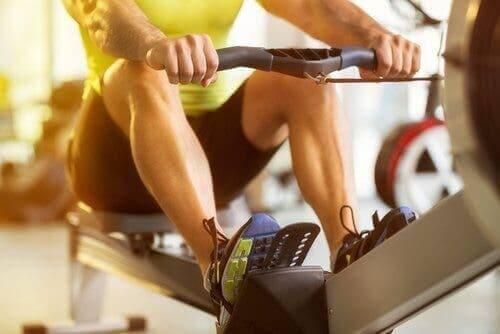 근력 운동으로 하부 요통 예방하기